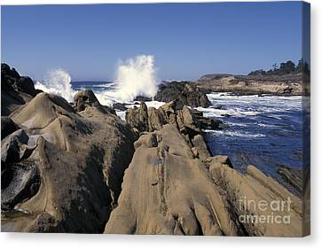 Point Lobos Seascape 3 Canvas Print