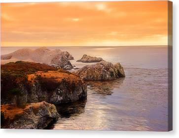 Point Lobos  Canvas Print by Utah Images