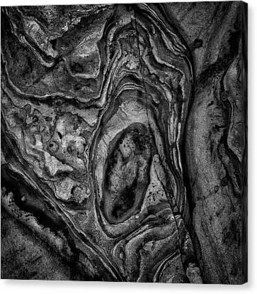 Canvas Print featuring the photograph Point Lobos Viii Sq Bw by David Gordon