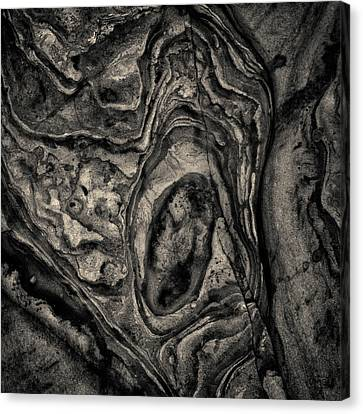 Canvas Print featuring the photograph Point Lobos Viii Sq Toned by David Gordon