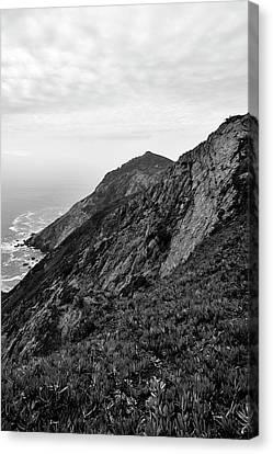 Point Reyes II Bw Canvas Print by David Gordon