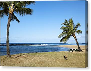 Poipu Beach Canvas Print by Kelley King
