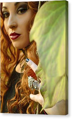 Poison Ivy Canvas Print by Pamela Patch