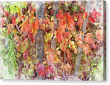 Poison Ivy Canvas Print by Peter J Sucy