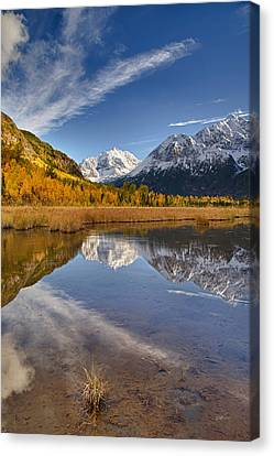 Polar Bear Reflect Canvas Print by Ed Boudreau