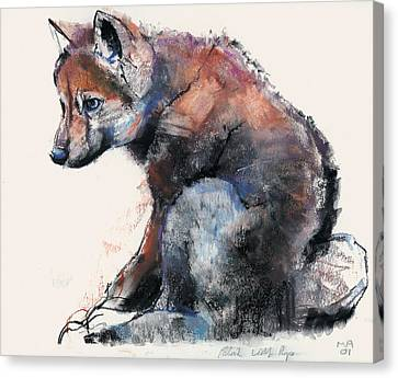 Polish Wolf Pup Canvas Print