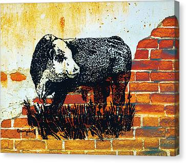 Canvas Print featuring the drawing Polled Hereford Bull  by Larry Campbell