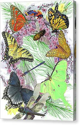 Pollinator Profusion Canvas Print by Forrest C Greenslade PhD
