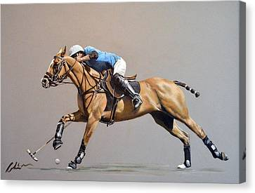 Polo 2015 Canvas Print