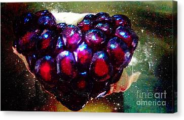 Pomegranate Heart In Space Canvas Print by Genevieve Esson