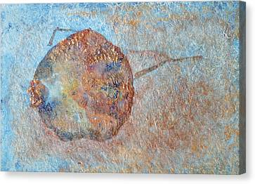 Pomegranate Seed Pod Canvas Print by Diana Davenport