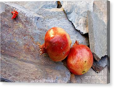 Canvas Print featuring the photograph Pomegranates On Stone by Cindy Garber Iverson