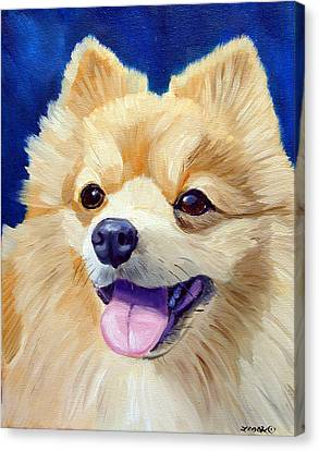 Pomeranian Canvas Print by Lyn Cook