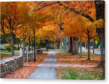 Pomfret Ct In Autumn Canvas Print by Jeff Folger