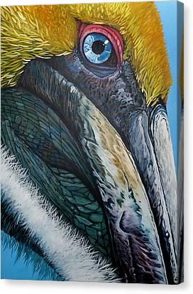 Canvas Print - Pompous Pelican by Jon Ferrentino