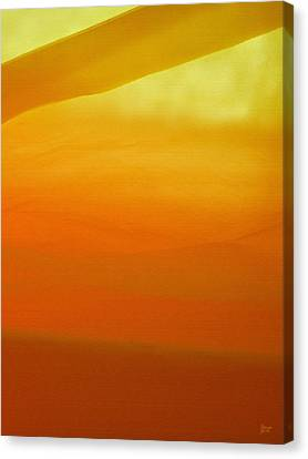 Poncho Abstract 10 Canvas Print by Jeff Breiman