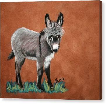 Poncho Canvas Print