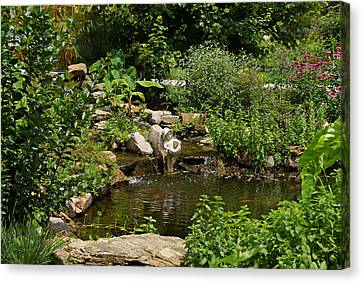Pond In The Garden Canvas Print