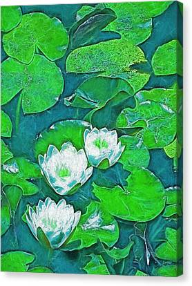 Canvas Print featuring the photograph Pond Lily 2 by Pamela Cooper