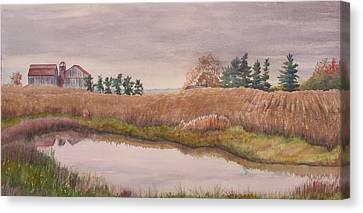 Pond Magic Canvas Print by Debbie Homewood