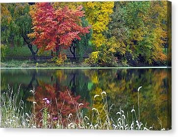 Pond Reflect Canvas Print by Andrew Kazmierski