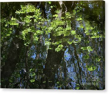 Pond Reflection 1 Canvas Print by Janeen Wassink Searles