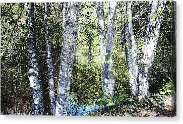 Pond Reflection Canvas Print by Perry Woodfin