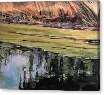 Pond Scum-heather Farms Walnut Creek Canvas Print