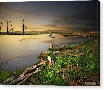 Pond Shore Canvas Print