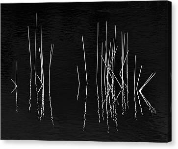 Pond Zen Canvas Print