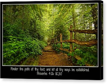 Ponder Thy Path - Poster Canvas Print by Stephen Stookey