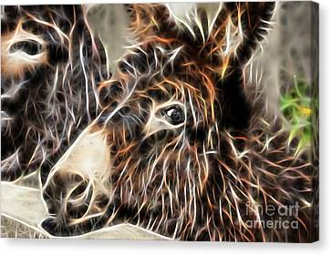 Pondering Canvas Print by Marvin Blaine