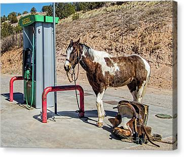 Canvas Print featuring the photograph Pony At The Pump by Britt Runyon