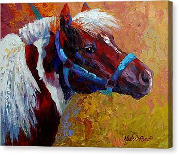 Pony Boy Canvas Print