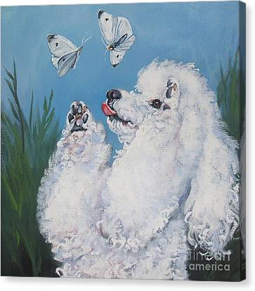 Poodle With Butterflies Canvas Print