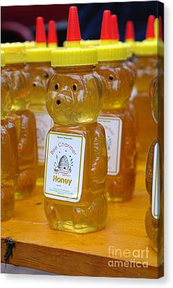 Pooh Honey Canvas Print by David Bearden