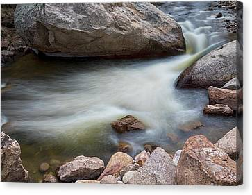 Pool Of Dreams Canvas Print by James BO Insogna