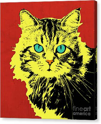Pop Cat Canvas Print