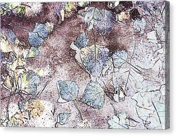 Poplar Leaf Path Canvas Print