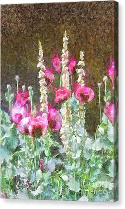 Poppies And Verbascum 2 Canvas Print by Shirley Stalter