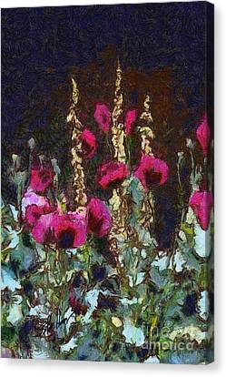 Poppies And Verbascum Canvas Print by Shirley Stalter