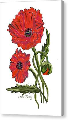 poppies by June Pressly Canvas Print by June Pressly