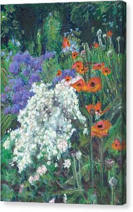 Poppies In June Garden Canvas Print by Judy Adamson