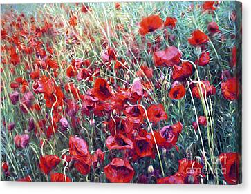 Poppies In Motion Canvas Print by Jutta Maria Pusl