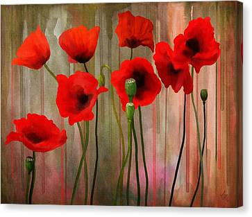 Poppies  Canvas Print by Ivana Westin