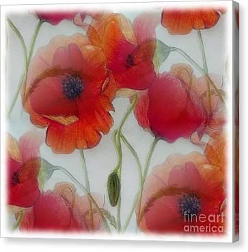 Silk Water Canvas Print - Poppies by Jamie Silker