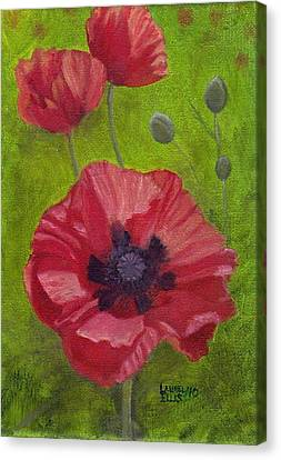 Poppies Canvas Print by Laurel Ellis