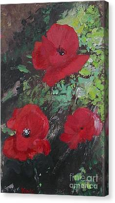 Poppies  Canvas Print by Lizzy Forrester