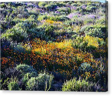 Canvas Print featuring the photograph Poppies On A Hillside by Glenn McCarthy Art and Photography