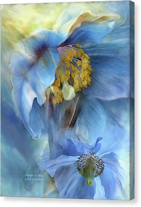 Poppies So Blue Canvas Print by Carol Cavalaris